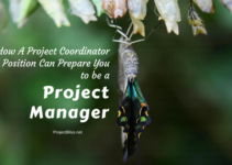 project coordinator job responsibilities leigh espy