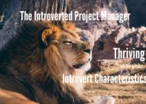 Introvert Characteristics