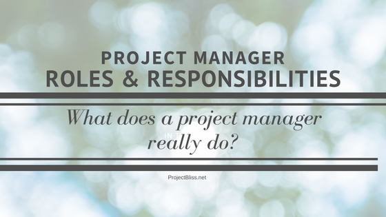 Project Manager Roles And Responsibilities What Does A Pm