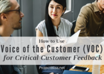 How to Use Voice of the Customer (VOC) for Critical Customer Feedback - Here's how to use Voice of the Customer techniques (VOC) to find out exactly what's important to your customer for valuable project insight. - https://projectbliss.net/voice-of-the-customer-voc/